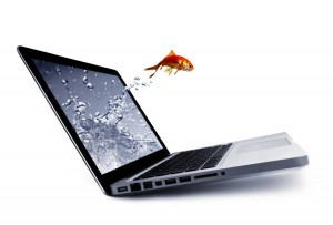 FishJumpingOutOfComputerScreen-Small